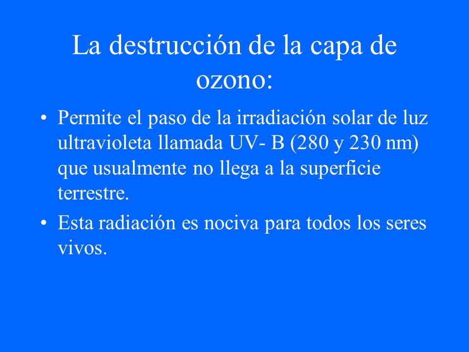 La destrucción de la capa de ozono: Permite el paso de la irradiación solar de luz ultravioleta llamada UV- B (280 y 230 nm) que usualmente no llega a
