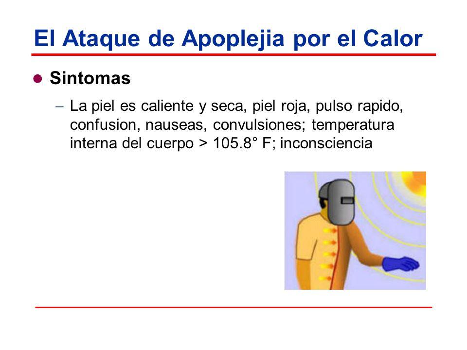 El Ataque de Apoplejia por el Calor Sintomas La piel es caliente y seca, piel roja, pulso rapido, confusion, nauseas, convulsiones; temperatura intern