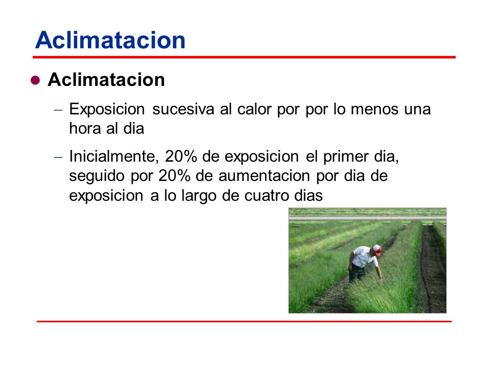 Aclimatacion Exposicion sucesiva al calor por por lo menos una hora al dia Inicialmente, 20% de exposicion el primer dia, seguido por 20% de aumentacion por dia de exposicion a lo largo de cuatro dias