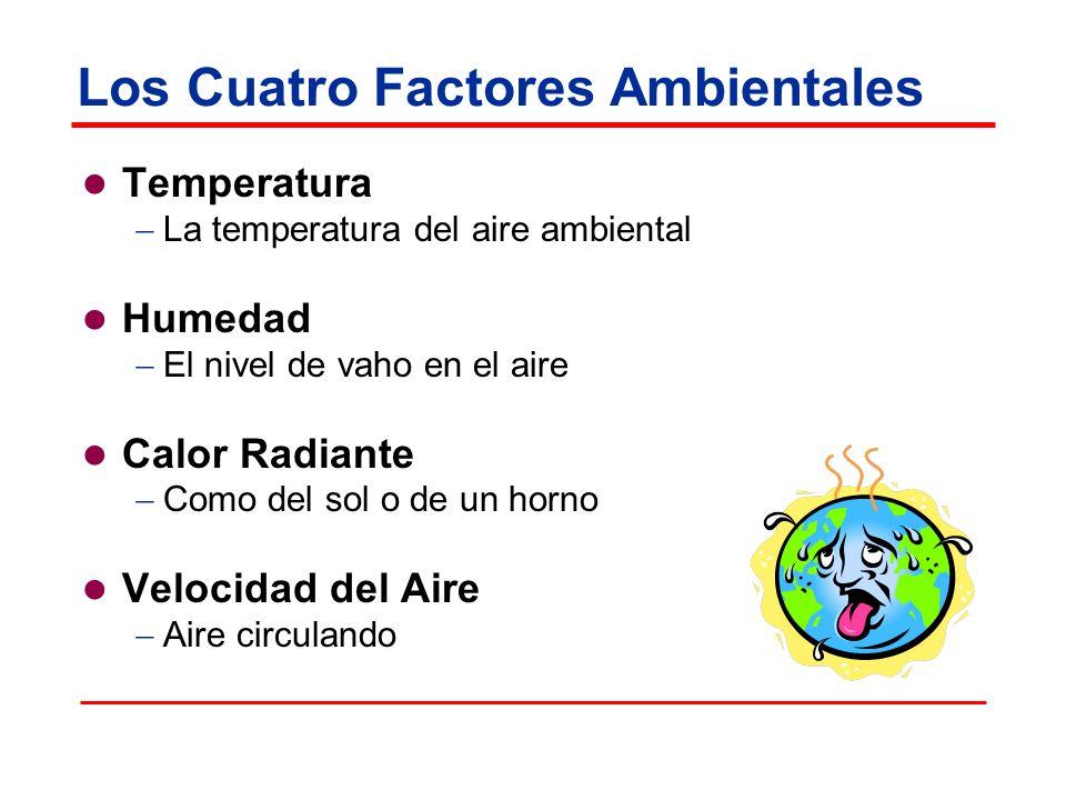 Los Cuatro Factores Ambientales Temperatura La temperatura del aire ambiental Humedad El nivel de vaho en el aire Calor Radiante Como del sol o de un horno Velocidad del Aire Aire circulando