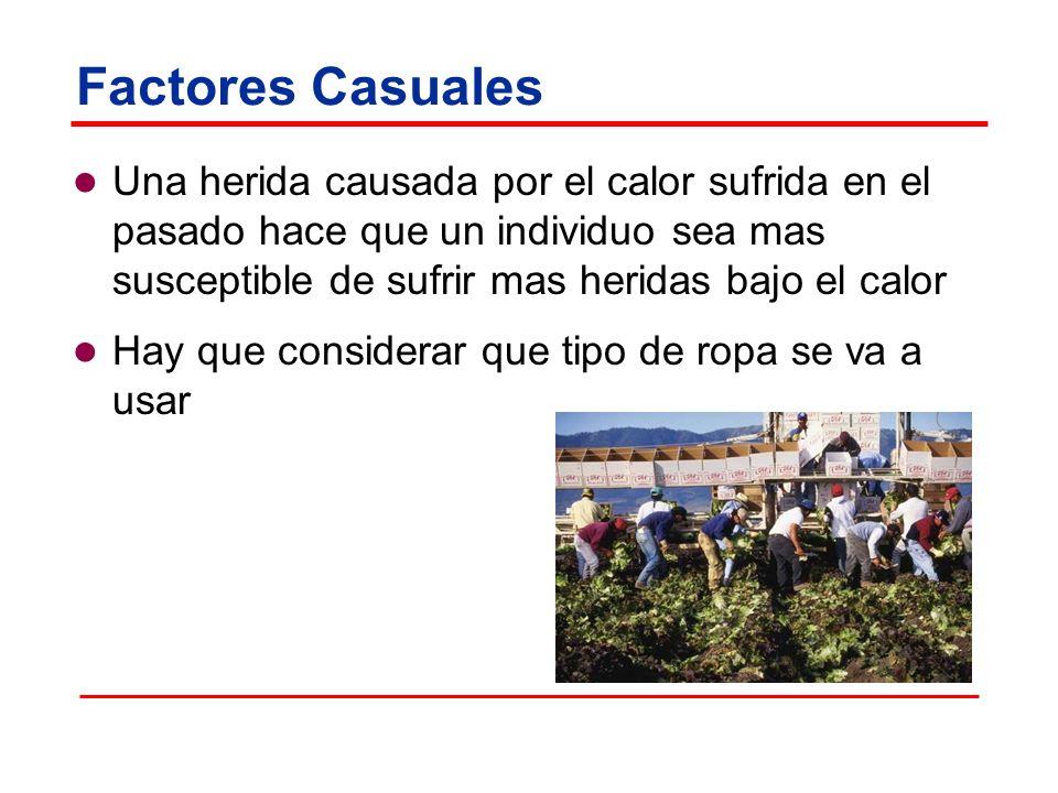 Factores Casuales Una herida causada por el calor sufrida en el pasado hace que un individuo sea mas susceptible de sufrir mas heridas bajo el calor H