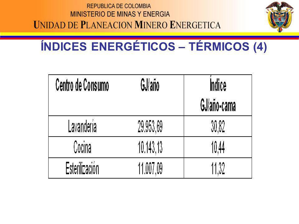 ÍNDICES ENERGÉTICOS – TÉRMICOS (4)