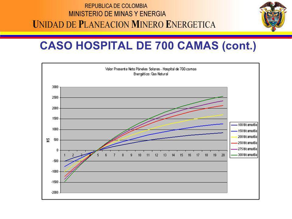 CASO HOSPITAL DE 700 CAMAS (cont.)