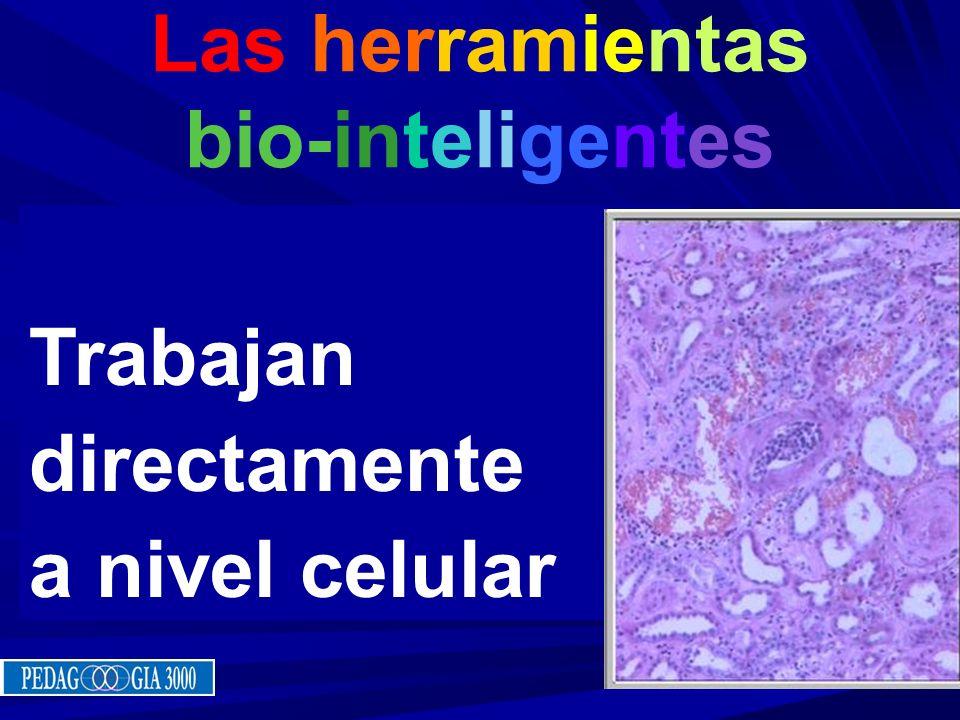 Las herramientas bio-inteligentes Trabajan directamente a nivel celular