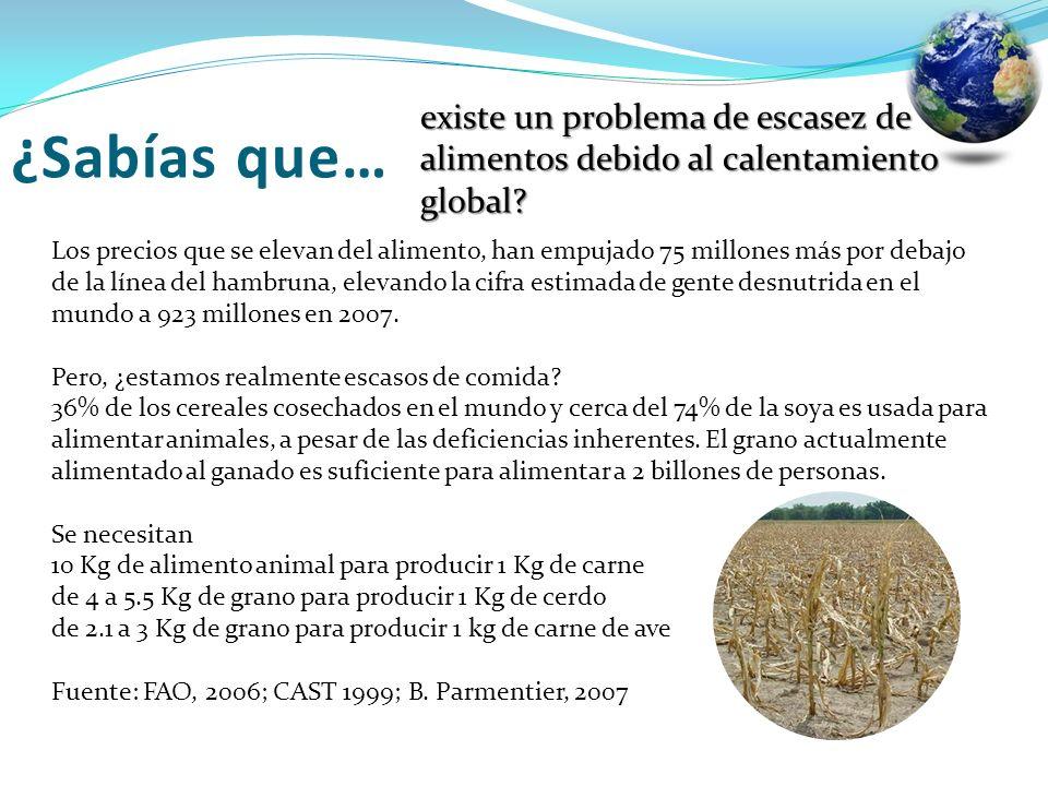 existe un problema de escasez de alimentos debido al calentamiento global? Los precios que se elevan del alimento, han empujado 75 millones más por de