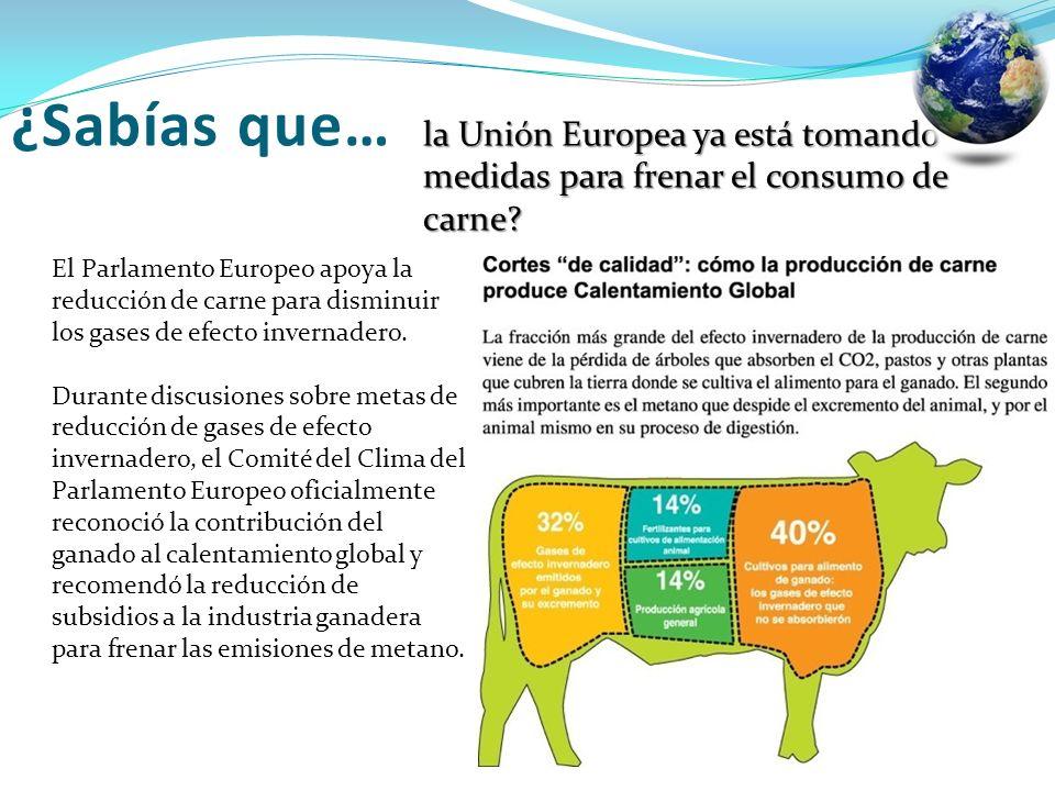 la Unión Europea ya está tomando medidas para frenar el consumo de carne? El Parlamento Europeo apoya la reducción de carne para disminuir los gases d