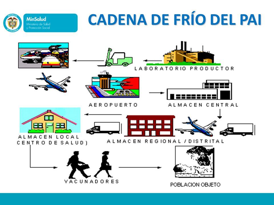 LINEAMIENTOS Una vez detectadas fallas en su sistema de almacenamiento, la Dirección local de Salud podrá invertir recursos para el fortalecimiento y mantenimiento de la misma.