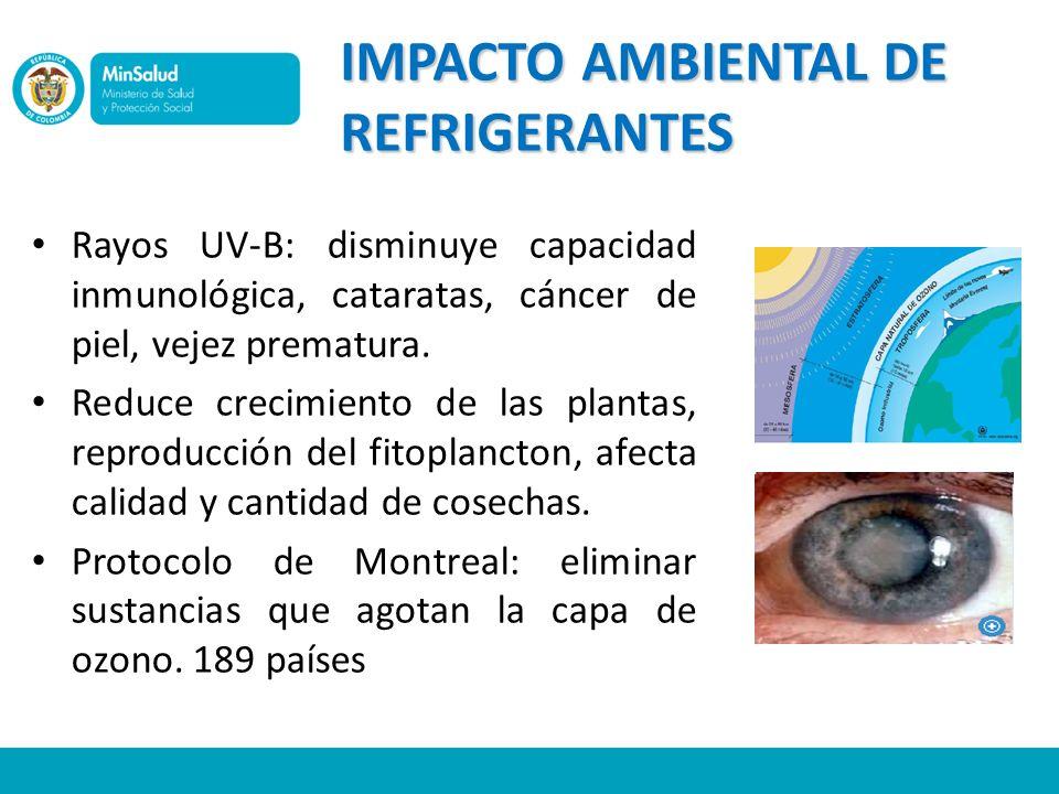 IMPACTO AMBIENTAL DE REFRIGERANTES Rayos UV-B: disminuye capacidad inmunológica, cataratas, cáncer de piel, vejez prematura. Reduce crecimiento de las