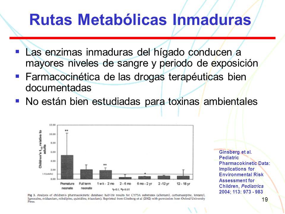 19 Rutas Metabólicas Inmaduras Las enzimas inmaduras del hígado conducen a mayores niveles de sangre y periodo de exposición Farmacocinética de las drogas terapéuticas bien documentadas No están bien estudiadas para toxinas ambientales Ginsberg et al.
