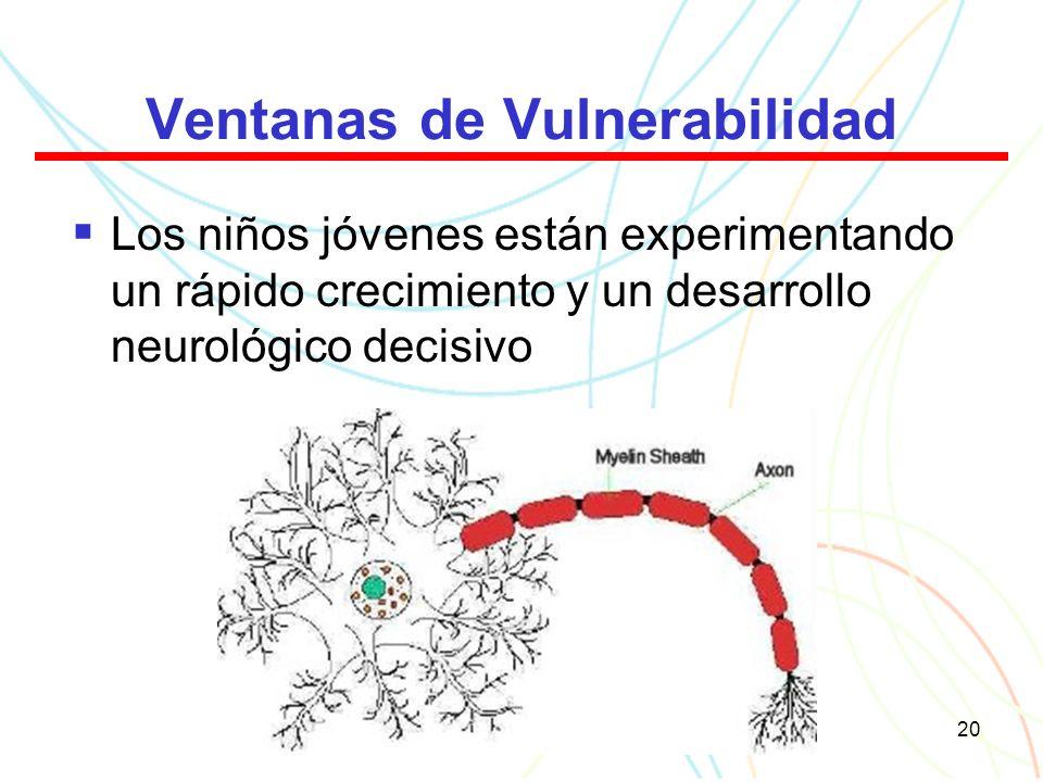 20 Ventanas de Vulnerabilidad Los niños jóvenes están experimentando un rápido crecimiento y un desarrollo neurológico decisivo