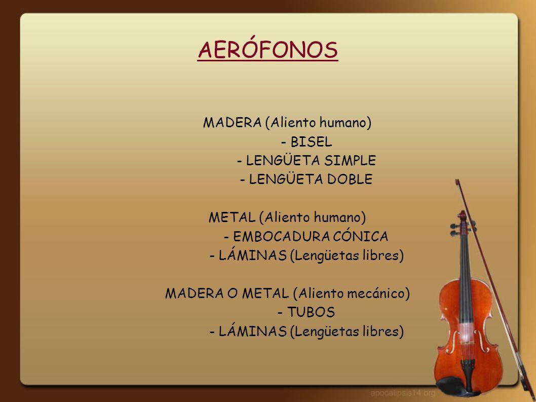 INSTRUMENTOS DE BISEL Flauta de panTxistu Flauta dulceOcarina Flauta traveseraQuena PiccoloCastrapuercas Pito castellanoFlabiol
