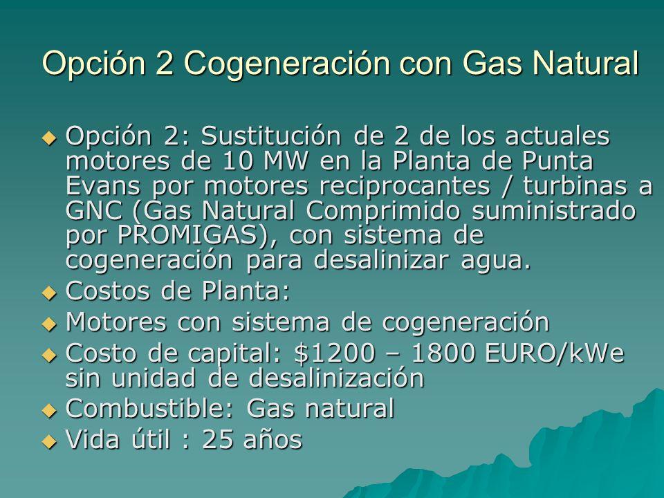 Opción 2 Cogeneración con Gas Natural Opción 2: Sustitución de 2 de los actuales motores de 10 MW en la Planta de Punta Evans por motores reciprocante