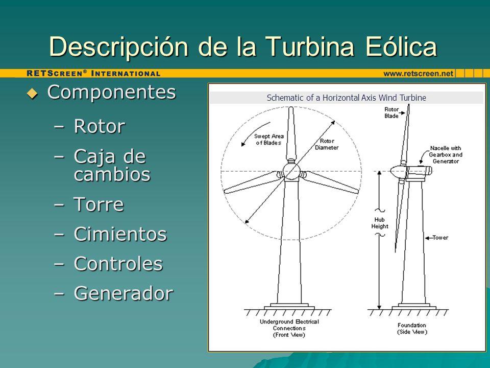 Descripción de la Turbina Eólica Componentes Componentes –Rotor –Caja de cambios –Torre –Cimientos –Controles –Generador Schematic of a Horizontal Axi