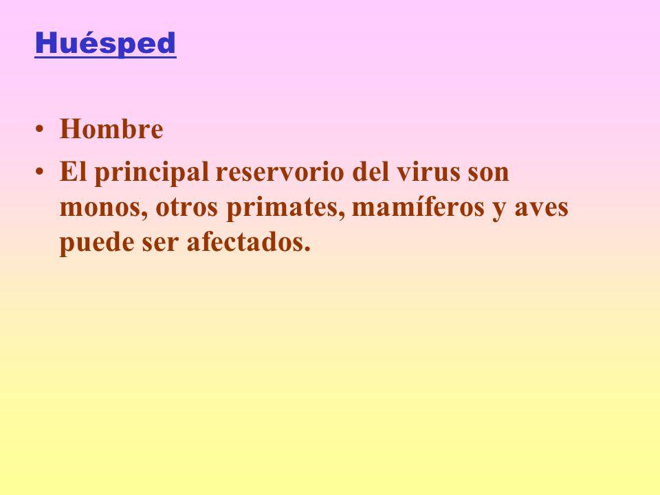 Huésped Hombre El principal reservorio del virus son monos, otros primates, mamíferos y aves puede ser afectados.