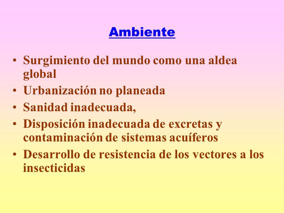 Ambiente Surgimiento del mundo como una aldea global Urbanización no planeada Sanidad inadecuada, Disposición inadecuada de excretas y contaminación de sistemas acuíferos Desarrollo de resistencia de los vectores a los insecticidas