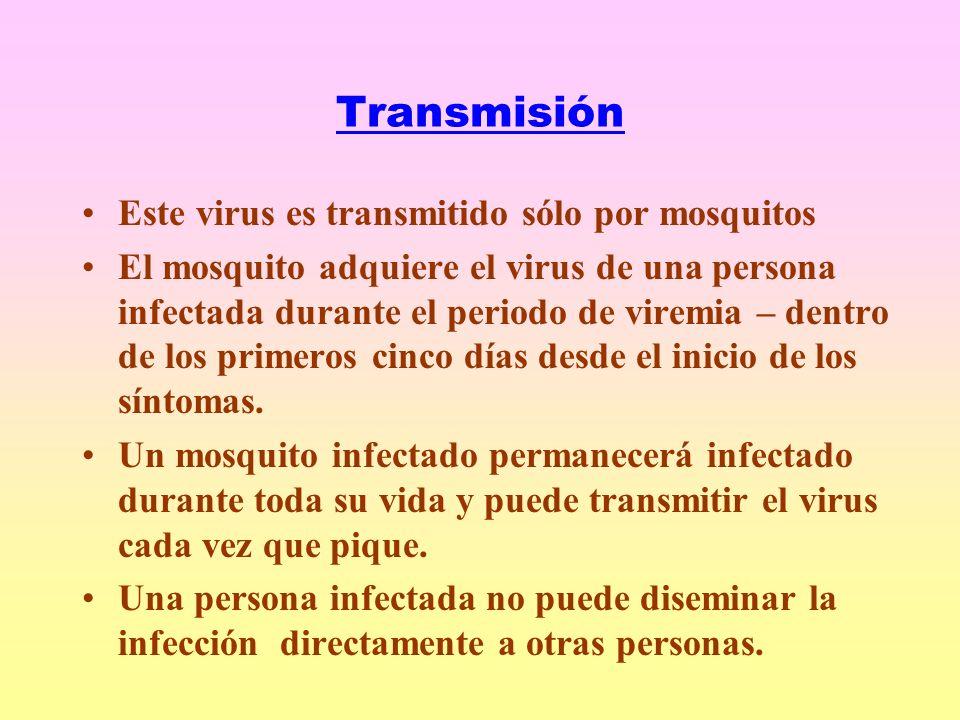 Transmisión Este virus es transmitido sólo por mosquitos El mosquito adquiere el virus de una persona infectada durante el periodo de viremia – dentro de los primeros cinco días desde el inicio de los síntomas.