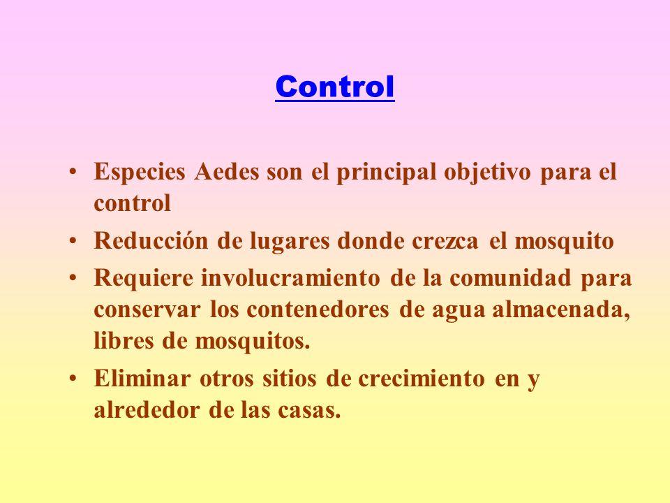 Control Especies Aedes son el principal objetivo para el control Reducción de lugares donde crezca el mosquito Requiere involucramiento de la comunidad para conservar los contenedores de agua almacenada, libres de mosquitos.