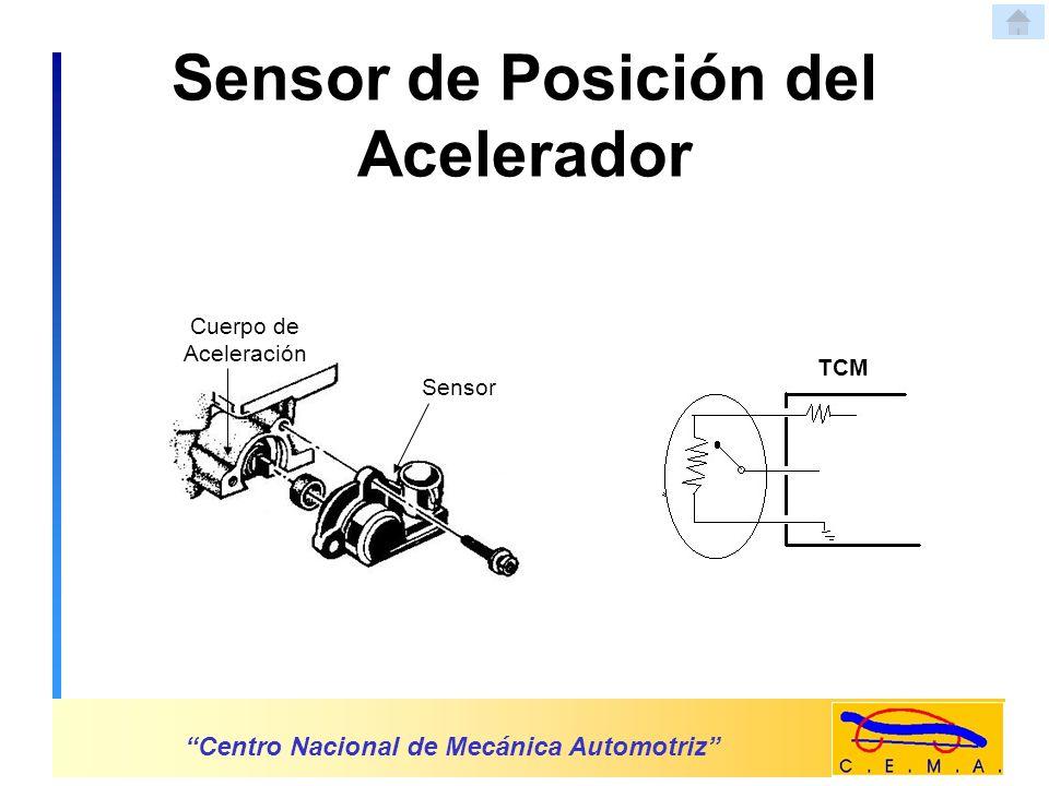 Centro Nacional de Mecánica Automotriz Señal 5.voltios tierra Sensor TCM Sensor Conector