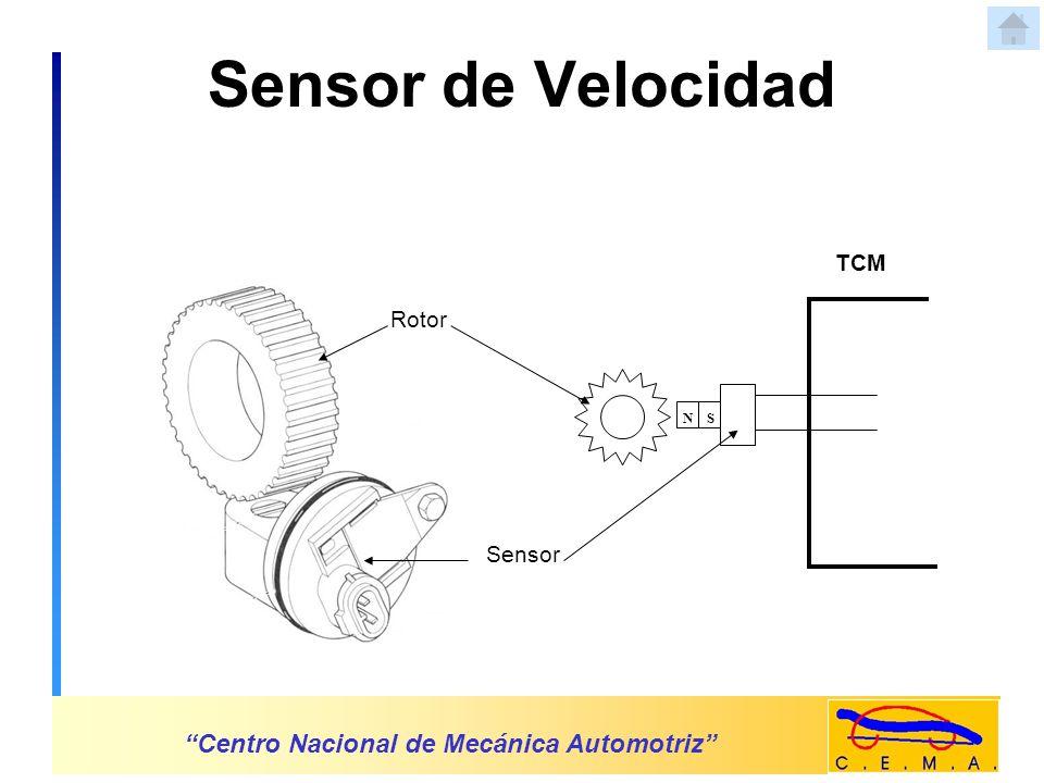 Sensor de Posición del Acelerador Centro Nacional de Mecánica Automotriz Sensor Cuerpo de Aceleración TCM