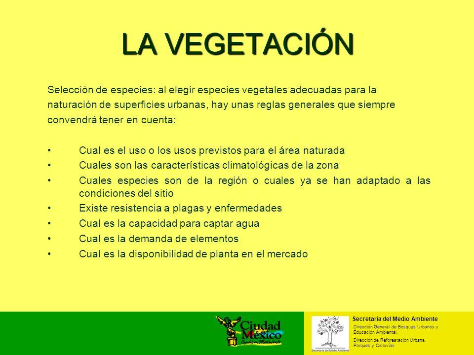 Secretaría del Medio Ambiente Dirección General de Bosques Urbanos y Educación Ambiental. Dirección de Reforestación Urbana, Parques y Ciclovías. LA V