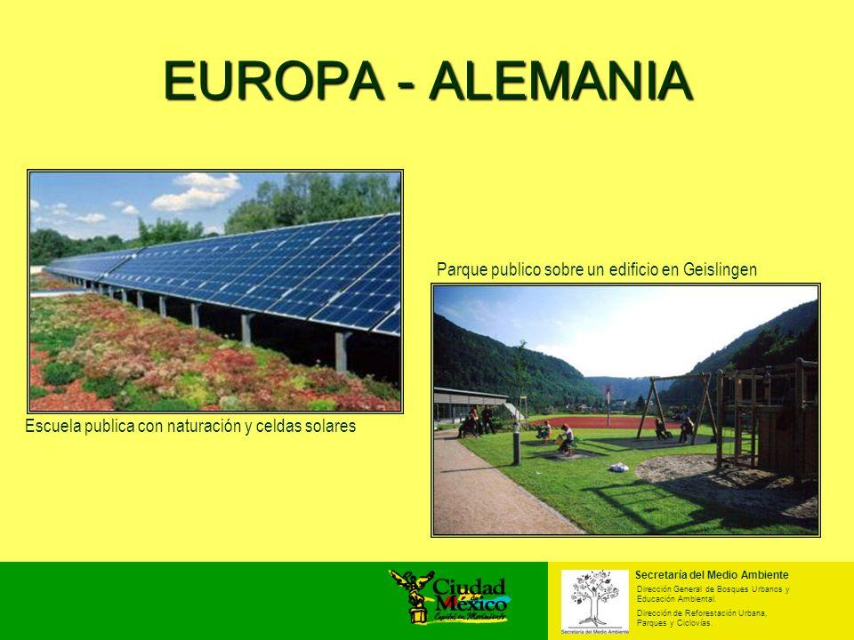 EUROPA - ALEMANIA Escuela publica con naturación y celdas solares Parque publico sobre un edificio en Geislingen Secretaría del Medio Ambiente Direcci