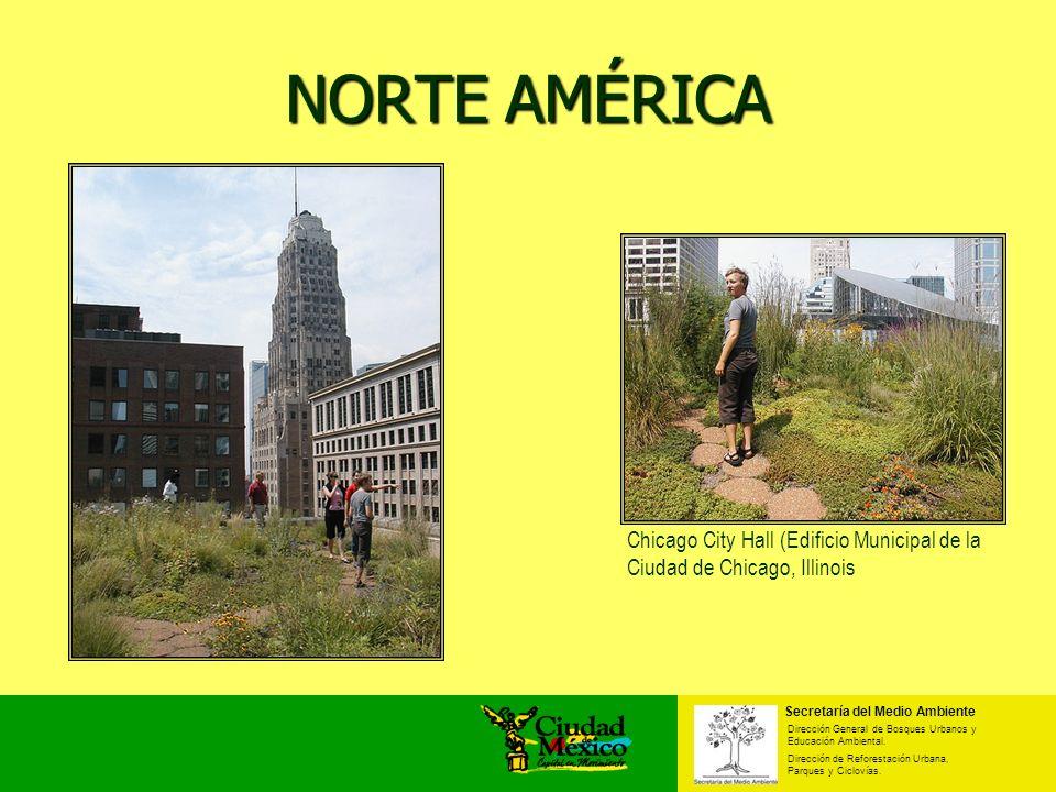 NORTE AMÉRICA Chicago City Hall (Edificio Municipal de la Ciudad de Chicago, Illinois Secretaría del Medio Ambiente Dirección General de Bosques Urban
