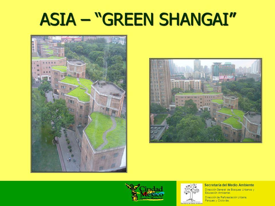 ASIA – GREEN SHANGAI Secretaría del Medio Ambiente Dirección General de Bosques Urbanos y Educación Ambiental. Dirección de Reforestación Urbana, Parq