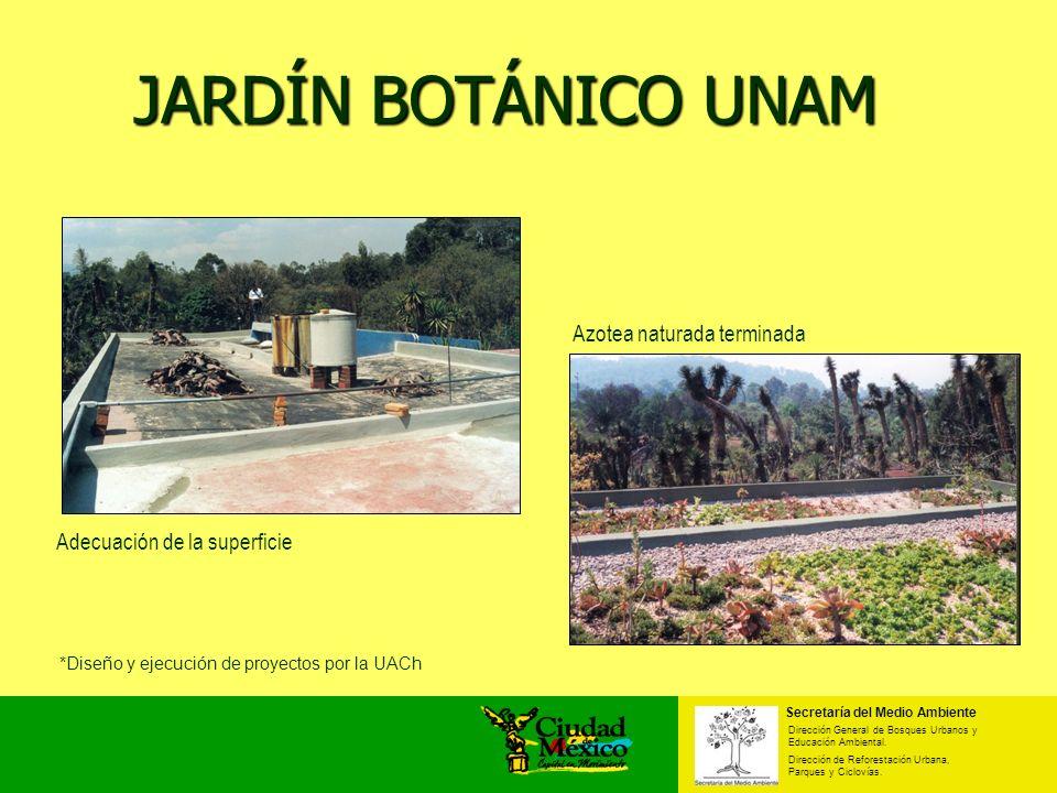 JARDÍN BOTÁNICO UNAM Adecuación de la superficie Azotea naturada terminada Secretaría del Medio Ambiente Dirección General de Bosques Urbanos y Educac