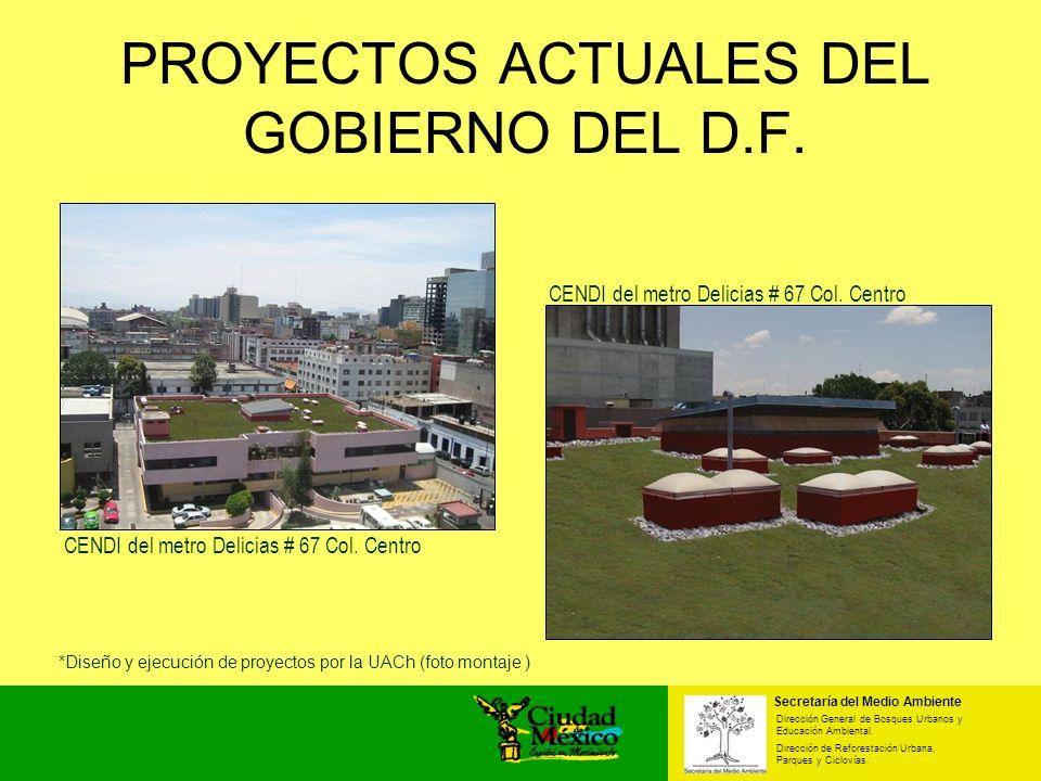 Secretaría del Medio Ambiente Dirección General de Bosques Urbanos y Educación Ambiental. Dirección de Reforestación Urbana, Parques y Ciclovías. *Dis