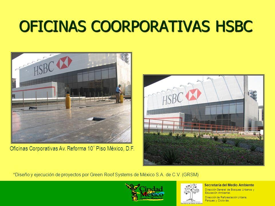 OFICINAS COORPORATIVAS HSBC Secretaría del Medio Ambiente Dirección General de Bosques Urbanos y Educación Ambiental. Dirección de Reforestación Urban