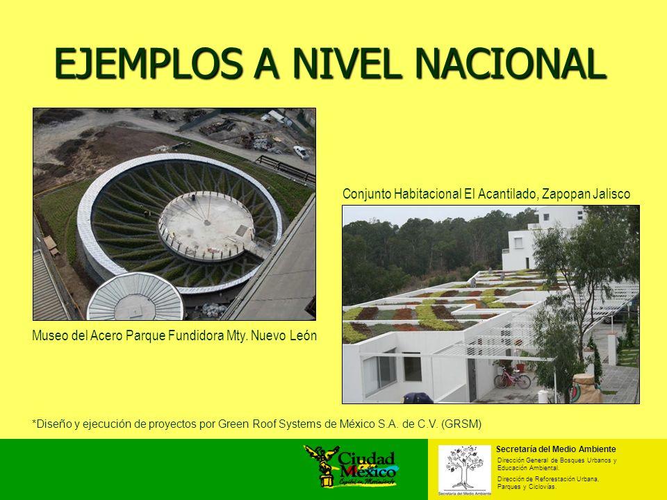 EJEMPLOS A NIVEL NACIONAL Secretaría del Medio Ambiente Dirección General de Bosques Urbanos y Educación Ambiental. Dirección de Reforestación Urbana,