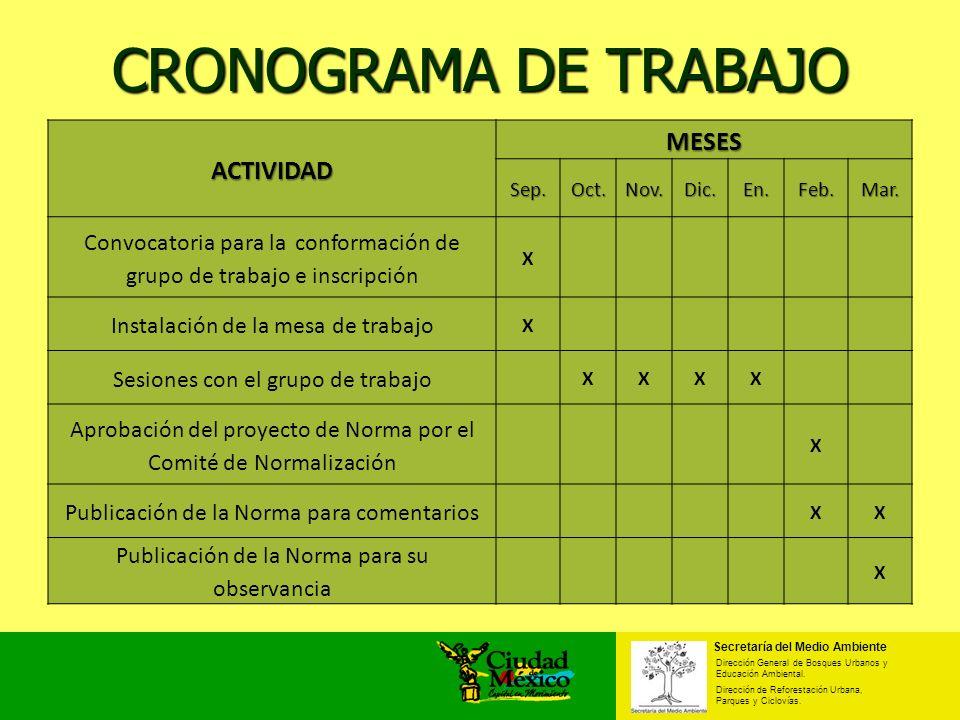 CRONOGRAMA DE TRABAJO Secretaría del Medio Ambiente Dirección General de Bosques Urbanos y Educación Ambiental. Dirección de Reforestación Urbana, Par