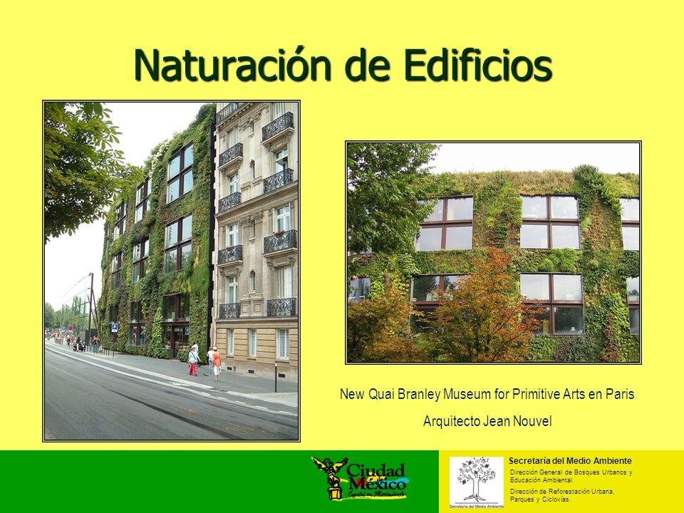 Naturación de Edificios New Quai Branley Museum for Primitive Arts en Paris Arquitecto Jean Nouvel Secretaría del Medio Ambiente Dirección General de