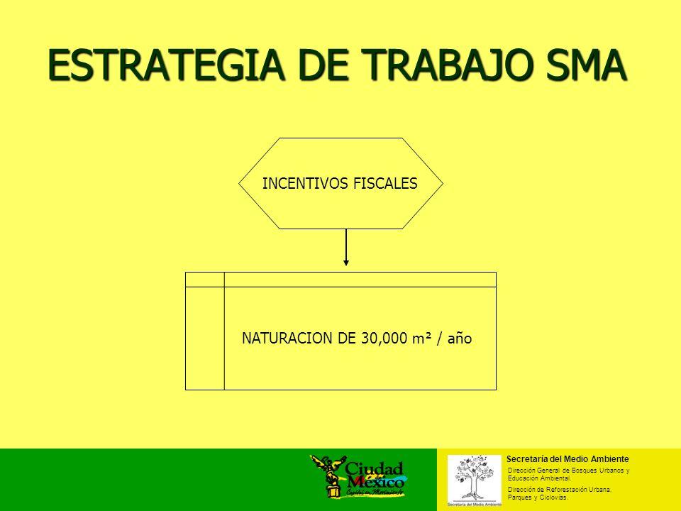 ESTRATEGIA DE TRABAJO SMA Secretaría del Medio Ambiente Dirección General de Bosques Urbanos y Educación Ambiental. Dirección de Reforestación Urbana,