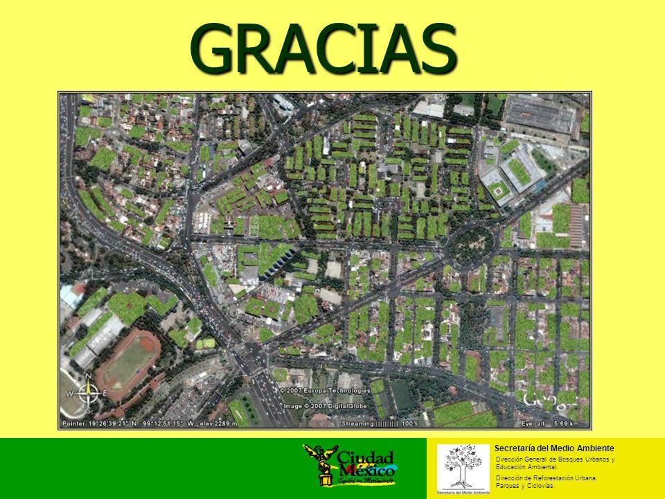 Secretaría del Medio Ambiente Dirección General de Bosques Urbanos y Educación Ambiental. Dirección de Reforestación Urbana, Parques y Ciclovías. GRAC