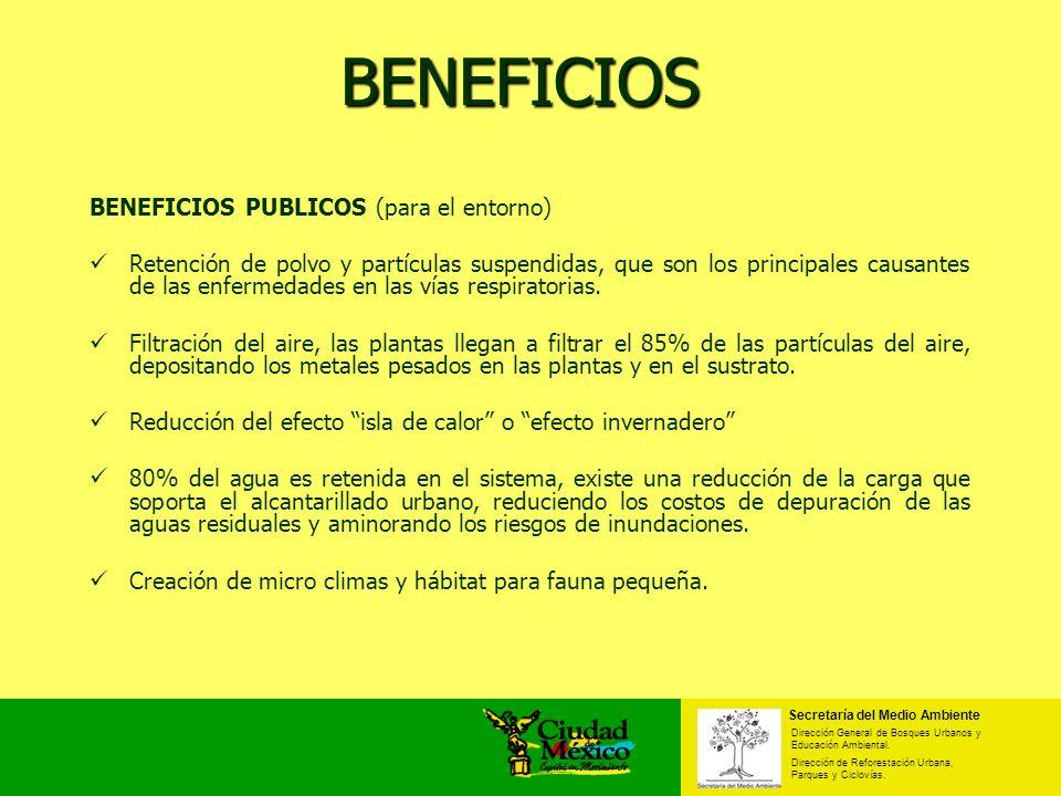 BENEFICIOS BENEFICIOS PUBLICOS (para el entorno) Retención de polvo y partículas suspendidas, que son los principales causantes de las enfermedades en