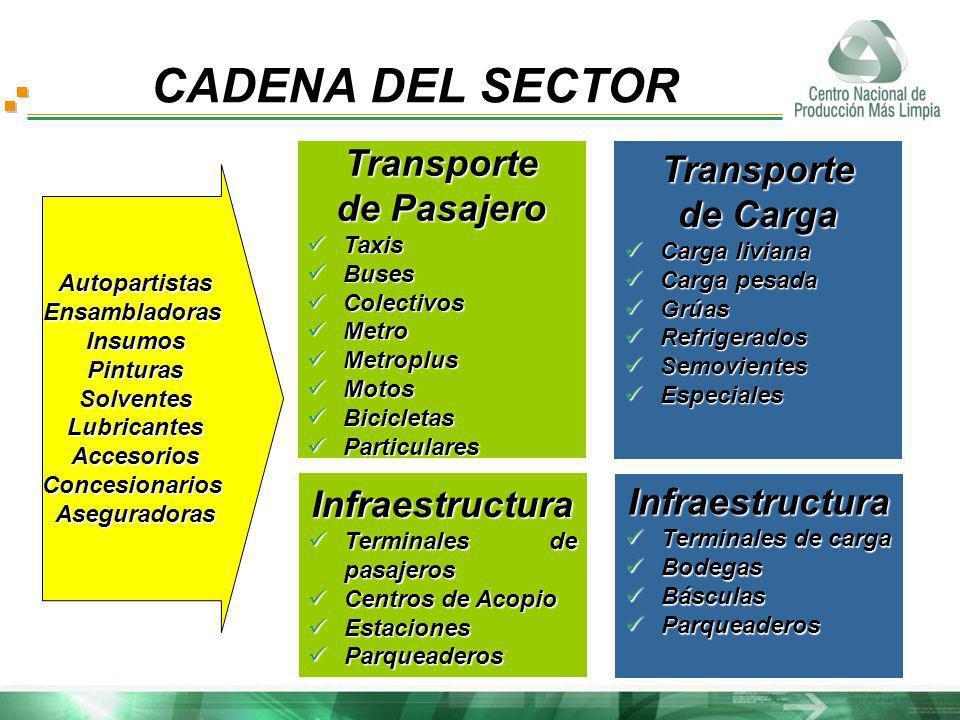 CADENA DEL SECTOR AutopartistasEnsambladorasInsumosPinturasSolventesLubricantesAccesoriosConcesionariosAseguradoras Transporte de Pasajero Taxis Taxis