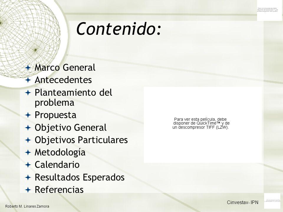 Contenido: Roberto M. Linares Zamora Cinvestav- IPN Marco General Antecedentes Planteamiento del problema Propuesta Objetivo General Objetivos Particu