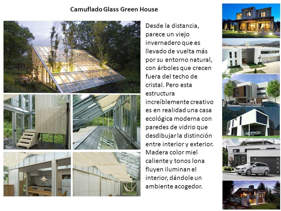 Camuflado Glass Green House Desde la distancia, parece un viejo invernadero que es llevado de vuelta más por su entorno natural, con árboles que crecen fuera del techo de cristal.