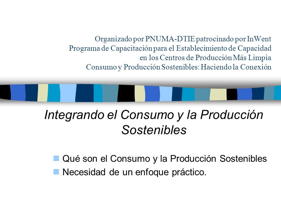 PNUMA - División de Tecnología, Industria y Economía Objetivos Mejorar la comprensión de los participantes sobre cómo el consumo y la producción sostenibles se interrelacionan Presentar las herramientas y estrategias disponibles para tratarlos Apoyar a los participantes en la identificación de oportunidades para incluir el consumo y producción sostenibles en sus actividades.