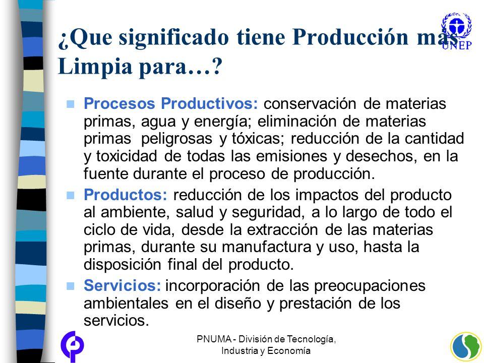 PNUMA - División de Tecnología, Industria y Economía ¿Que significado tiene Producción más Limpia para…? Procesos Productivos: conservación de materia