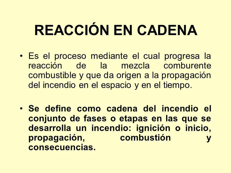 REACCIÓN EN CADENA Es el proceso mediante el cual progresa la reacción de la mezcla comburente combustible y que da origen a la propagación del incend