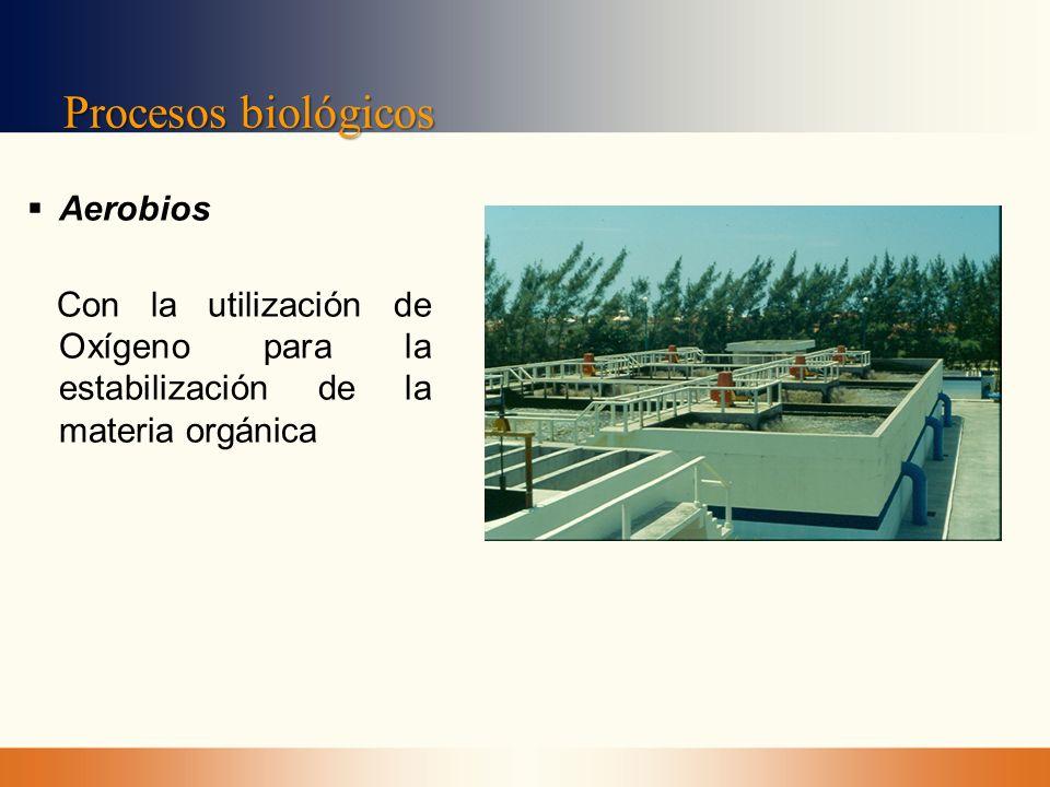 Procesos biológicos Aerobios Con la utilización de Oxígeno para la estabilización de la materia orgánica