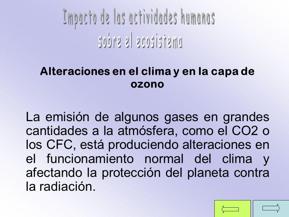 Alteraciones en el clima y en la capa de ozono La emisión de algunos gases en grandes cantidades a la atmósfera, como el CO2 o los CFC, está producien