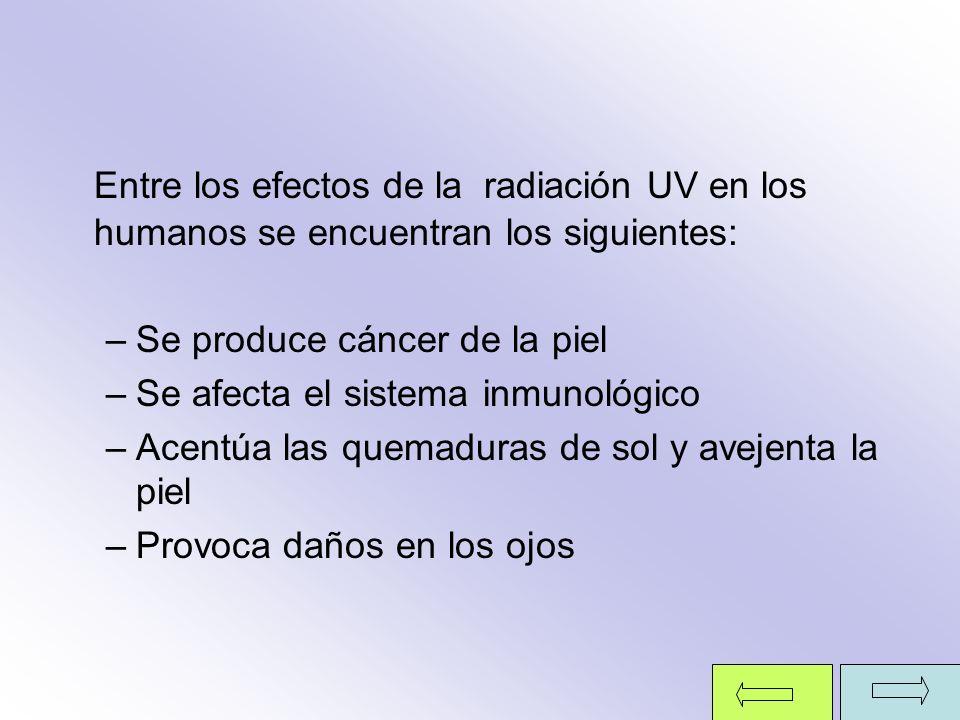 Entre los efectos de la radiación UV en los humanos se encuentran los siguientes: –Se produce cáncer de la piel –Se afecta el sistema inmunológico –Ac