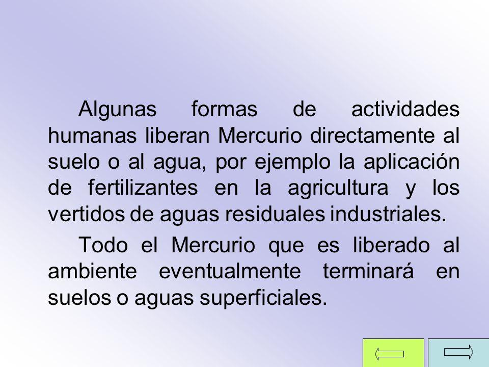 Algunas formas de actividades humanas liberan Mercurio directamente al suelo o al agua, por ejemplo la aplicación de fertilizantes en la agricultura y