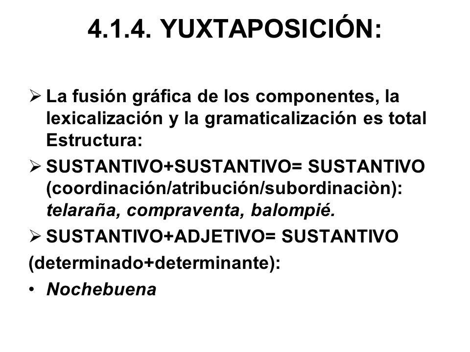 4.1.4. YUXTAPOSICIÓN: La fusión gráfica de los componentes, la lexicalización y la gramaticalización es total Estructura: SUSTANTIVO+SUSTANTIVO= SUSTA