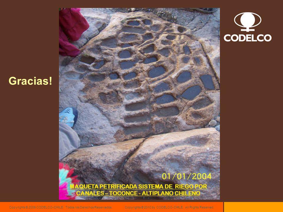 Copyrights © 2009 CODELCO-CHILE. Todos los Derechos Reservados. Copyrights © 2010 by CODELCO-CHILE. All Rights Reserved. Gracias! MAQUETA PETRIFICADA