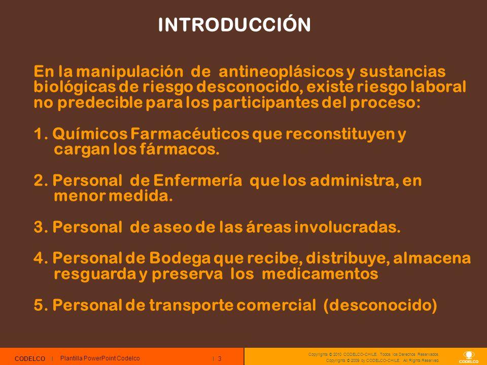 3 CODELCO Copyrights © 2010 CODELCO-CHILE. Todos los Derechos Reservados. Copyrights © 2009 by CODELCO-CHILE. All Rights Reserved. INTRODUCCIÓN Planti