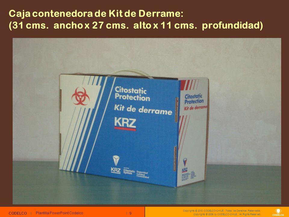 9 CODELCO Copyrights © 2010 CODELCO-CHILE. Todos los Derechos Reservados. Copyrights © 2009 by CODELCO-CHILE. All Rights Reserved. Caja contenedora de